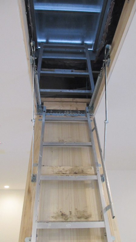 Pull Down Ladder
