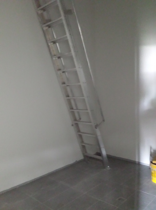 A step ladder being for safe access to the roof.
